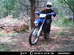 Self_Portrait_01 (jimkk01) Tags: woods motorcycle yamaha wr450f scrambles