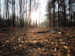 (ela_s) Tags: autumn canon krakow explore s90 jesie