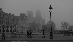 Promenade ! (Kalsa (m.a.mondini)) Tags: travel bridge winter blackandwhite bw paris france europa europe frog ponte notredame pont nebbia francia churchs eglises blackwhitephotos goldstaraward worldtrekker saariysqualitypictures mygearandme mygearandmepremium