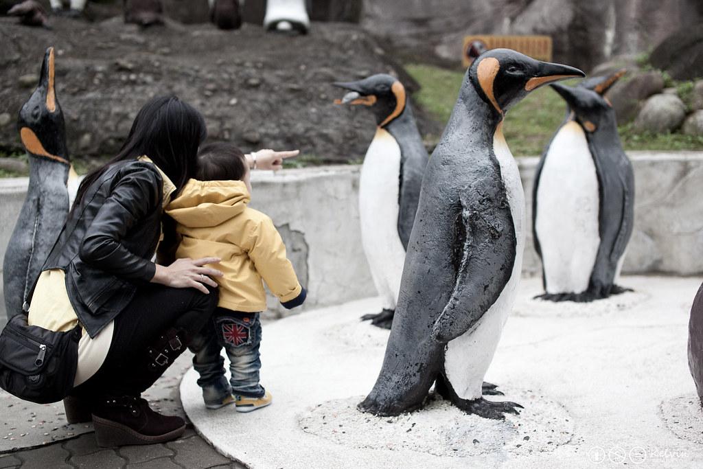 20120115小可樂動物園PAPAGO-11.jpg