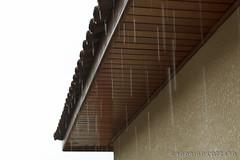 Chuva (Rodrigo Cozzato) Tags: chuva