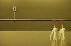 Hang loose (Scilla sinensis) Tags: vertical horizontal shirts senkrecht waagerecht fotosondag lodrät fs120122 lodratvagrat