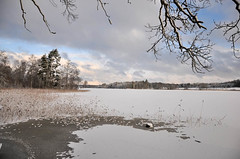 Winter lake (hilda_r) Tags: winter white snow nature vinter sweden january sverige sn januari