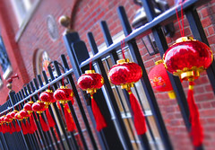 Chinese New Year's Decorations (Warriorwriter) Tags: nyc winter snow newyork january photographers cameras photowalk pigsty stynycjan12