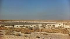 Rural Basrah, Southern Iraq