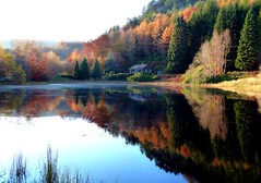 Polney Loch Autumn Colours . (eric robb niven) Tags: autumn lumix scotland perthshire loch dunkeld polney tz8