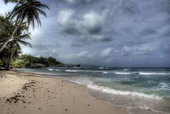 Beach, Barbados