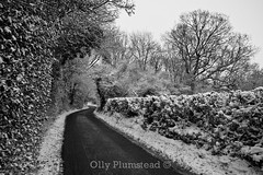 Snowy Worlds End Lane (Olly Plumstead) Tags: road morning winter bw white snow black cold tree canon landscape kent angle snowy mark low wide row ii hedge lane worlds end 5d olly hedgerow 1740l plumstead chelsfield 5d2