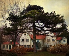 Adamson Estate (scilit) Tags: trees winter building history texture pinetree architecture landscape estate structure lakeontario sincity ourtime wow1 wow2 colonialrevival theworldwelivein adamsonestate flemishstyle qualitysurroundings magicuniverse magicunicornvery