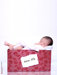 | New life (  | Asma Almahmoud) Tags: life new canon names 550     almahmoud