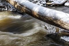 Creek (laszlofromhalifax) Tags: winter snow canada cold ice creek bedford moving novascotia snowy freezing fast halifax