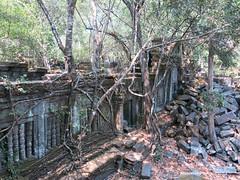 Beng Melea Temple - Siem Reap Cambodia (WanderingPhotosPJB) Tags: tree temple cambodia roots siemreap angkor bengmelea suryavarmanii
