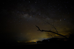_DSF8689 (wilzworkz) Tags: beach night stars astro astrophotography malaysia nightsky mersing milkyway