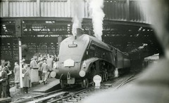 img610 (OldRailPics) Tags: edinburgh steam kingfisher british locomotive railways waverley 60024