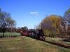 Px38-805 (pedro4d) Tags: mamiya film analog train 645 fuji para tl railway steam velvia pro fujifilm 100 gauge narrow engin wenecja sekor parowóz 8019 schmalspurbahn znin px38805 damflok pałuki px38