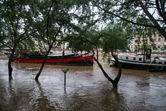 Quai de la Tournelle (dprezat) Tags: paris seine river nikon flooding waterfront flood berge pont idf inondation overflow fleuve d800 crue rive inundation laseine nikond800
