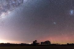 Competing Lights (AllisonwonderlandNZ) Tags: newzealand sky stars galaxy nz nightsky timaru milkyway starlight southernlights auroraaustralis southcanterbury magellanicclouds astrometrydotnet:status=failed astrometrydotnet:id=nova1603388