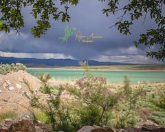 Desert Oasis (Rogue Aurora Photography) Tags: utah oasis yuba yubalake utahdesert desertoasis utahcamping yubalakestatepark oasiscampground
