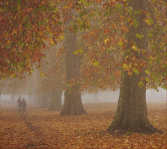 Southwark Park (davemason) Tags: park autumn mist london couple grain noise pictorialism sourhwark