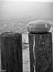 Havng (brosarp) Tags: havng landskap galleri