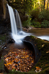 Raper Creek Falls (John Cothron) Tags: autumn usa fall nature water georgia waterfall outdoor sunny clarkesville habershamcounty johncothron rapercreekfalls cothronphotography