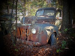 Time goes on (Dave* Seven One) Tags: rot art classic ford abandoned broken nature overgrown truck ga vintage georgia dead woods junk rust decay rusty dent forgotten junkyard dents fordtruck fomoco oldcarcity classicvintage