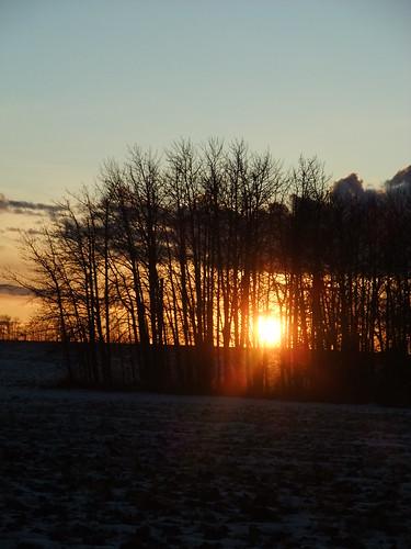 20111210_Sunset-1012