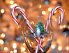 For Aurelia (Just Joe ( I'm back...sort of )) Tags: christmas xmas light red white color silver gold nikon focus december bright bokeh celebration dailyphoto candycanes odc 365group ourdailychallenge ourddailychallenge theateamrallyingforaurelia