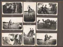 Photograph album of Mr L.G. Watt, NSW Board of...