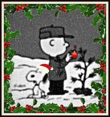 Charlie Brown's Christmas Tree (Free Of The Demon) Tags: christmas travel family portrait usa home beautiful kids america wow puppy newjersey holidays nj shore jersey anthony greatshot 1001nights picturesque soe smrgsbord razzie expressyourself nastalgia 5photosaday fineartphotos anawesomeshot almostanything ysplix theunforgettablepictures brilliant~eye~jewel awwwed shiningstar life~asiseeit beautyunnoticed ilovemypics bellissimoscatto onewordwow gr8photo beautifulsecrets freeofthedemon edcarbo