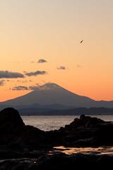 Mt. Fuji from Enoshima island with painting composition (Takashi(aes256)) Tags: sea bird landscape niceshot enoshima 海 富士山 mtfuji 江ノ島 風景写真 abigfave canonef85mmf12liiusm トンビ canoneos7d