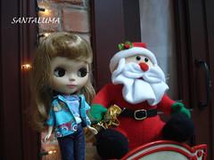 Que fofo esse Noel,diz Iani!!