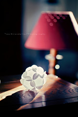 Playing with light (*Les Hirondelles* Photography) Tags: christmas wood winter light shadow italy sun house playing home lamp canon paper daylight casa italian warm day ray dof with bokeh handmade interior ombra decoration craft ornament rays christmasornament carta lampada interni wintry rayofsun raggio raggiodisole fattoamano handmadeornament