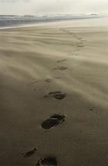 5-1-12 (Copperhobnob) Tags: sea eye beach sand wind explore footsteps portfolio copperbeech poty13l