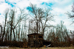 Old (SBSTNC) Tags: old house clouds forrest lexington vacant dilapidated