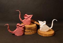 Mouse (Hoang Tien Quyet) (Danielle Verbeeten) Tags: baby mouse origami mice papier folding geboorte muis muizen beschuitmetmuisjes paer hoangtienquyet