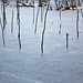 Art Omi in Winter - Ghent, NY - 2012, Jan - 07.jpg by sebastien.barre
