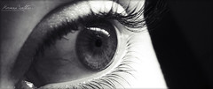 (HQheart) Tags: bw white black detail macro eye monochrome up photography mirror eyes close skin soul