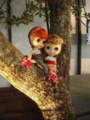 Estamos xonadas por esta árvore!!