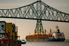Astoria (Jeffery P.) Tags: bridge oregon pier astoria shipping lumber blinkagain