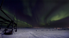 Northern Lights in Iceland (Tryggvi Már) Tags: lights iceland aurora northern borealis