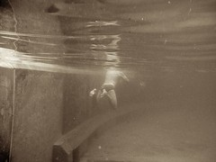 swimming (saltytheseal) Tags: ocean morning light sea summer people sunlight man reflection male water pool monochrome wall sepia swim canon gold dawn golden early back aqua warm underwater floor exercise pacific sydney australia stroke powershot clear pacificocean nsw backside behind lit aquatic underneath speedo swimmers sunlit breaststroke cardio cardiovascular bronte daybreak exercising g10 brontepool