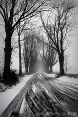 A path less ordinary... (socalgal_64) Tags: road trees winter blackandwhite bw mist snow nature misty fog forest woods pennsylvania snowy path infinity ngc foggy tracks pa snowing snowfall lehighvalley supershot