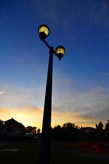 Lamppost at Sunset (calebcarson) Tags: sanfrancisco california ca blue sunset sky orange sun silhouette set clouds dark campus bay berkeley san francisco university glow sunny lamppost cal sanfranciscobayarea area lamps uc setting incandescent