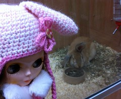 Blythe Physical Challenge #47: Blythe And Her Familiar