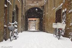 ...Ferrara e la neve... (yude57) Tags: neve ferrara bianco freddo nevicata biciclette