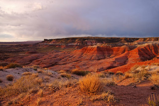 Last Light on the Painted Desert