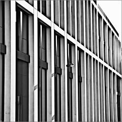 IIIiI\IIIII\ (Luc B - PhLB) Tags: shadow white black building lines vertical architecture germany diagonal abstraction dusseldorf