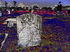 Cemetery Photos