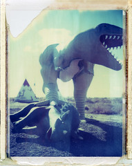 Goodwater, AZ (moominsean) Tags: arizona polaroid route66 desert tourist dine navajo holbrook dinosaurs 190 wigwams goodwater iduv timeflux expired022008 painteddesertindiancenter